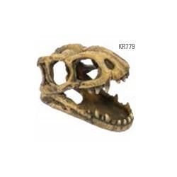 Tiranosaurio Rex Cabeza Fósil