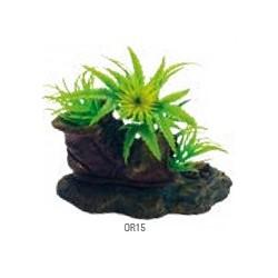 Zapato con plantas