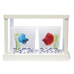 KIT DE AMPLIACIÓN BETAWORLD (2 BETTAS)