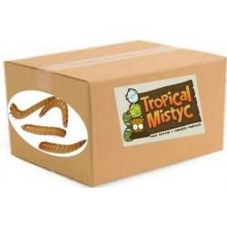 caja 1/2kg tenebrio