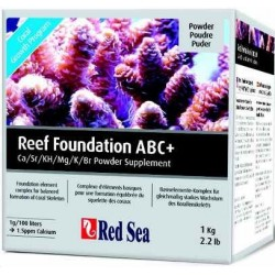 RED SEA REEF FOUNDATION COMPLETO