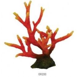 Coral diablo rojo