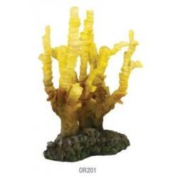 Coral esponja