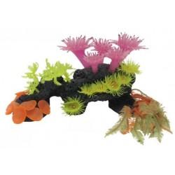 Conjunto Deco-Reef 27 x 10 x 17 cm