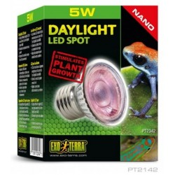 Daylight LED Spot Nano 5 W